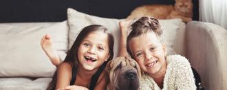 Top 5 assurances santé animaux