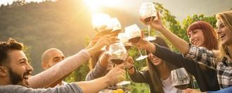 agnes buzyn vin alcool industrie