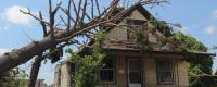 réforme régime catastrophes naturelles